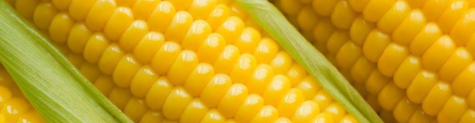Watch out!! Corn Free is NOT 'Gluten Free'